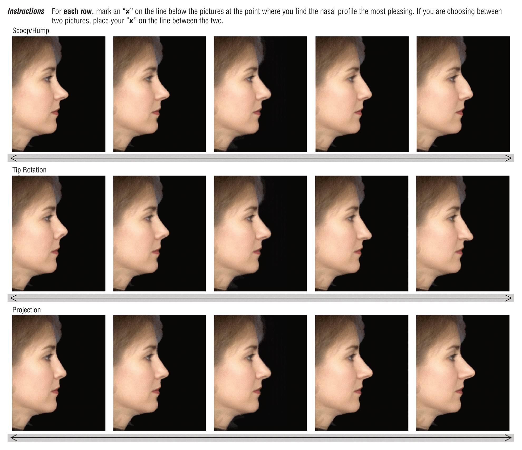 nose shapes and names - HD1980×1708